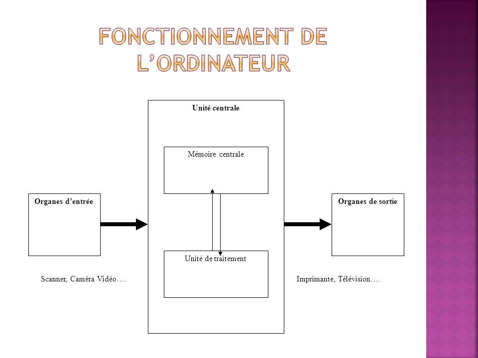 Unité centrale Unité de traitement Mémoire centrale Organes dentréeOrganes de sortie Scanner, Caméra Vidéo….Imprimante, Télévision….