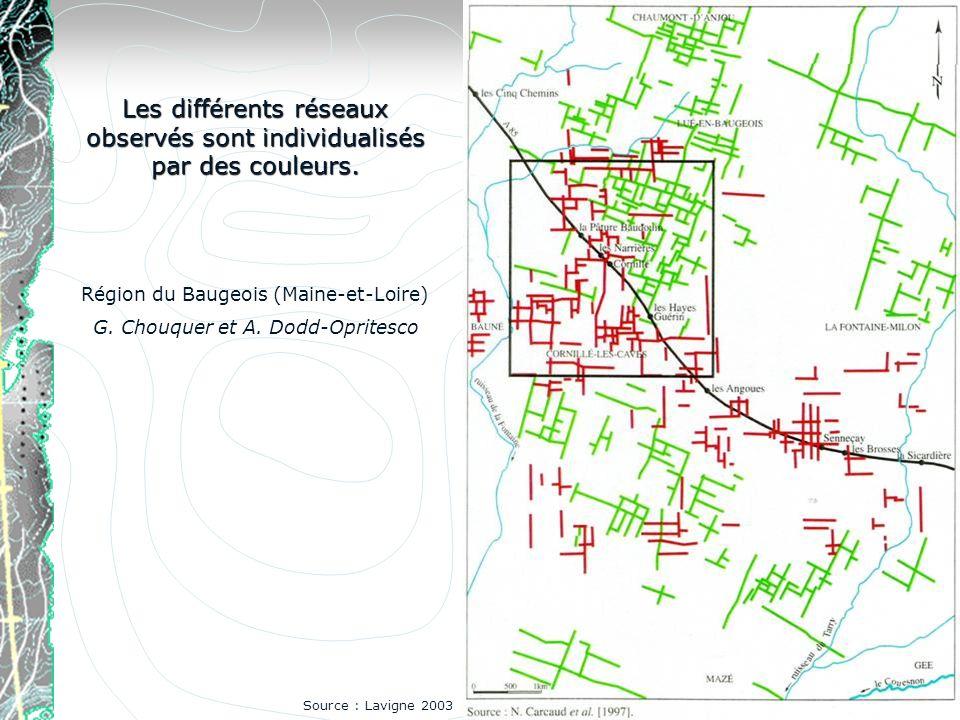 Les différents réseaux observés sont individualisés par des couleurs. Région du Baugeois (Maine-et-Loire) G. Chouquer et A. Dodd-Opritesco Source : La