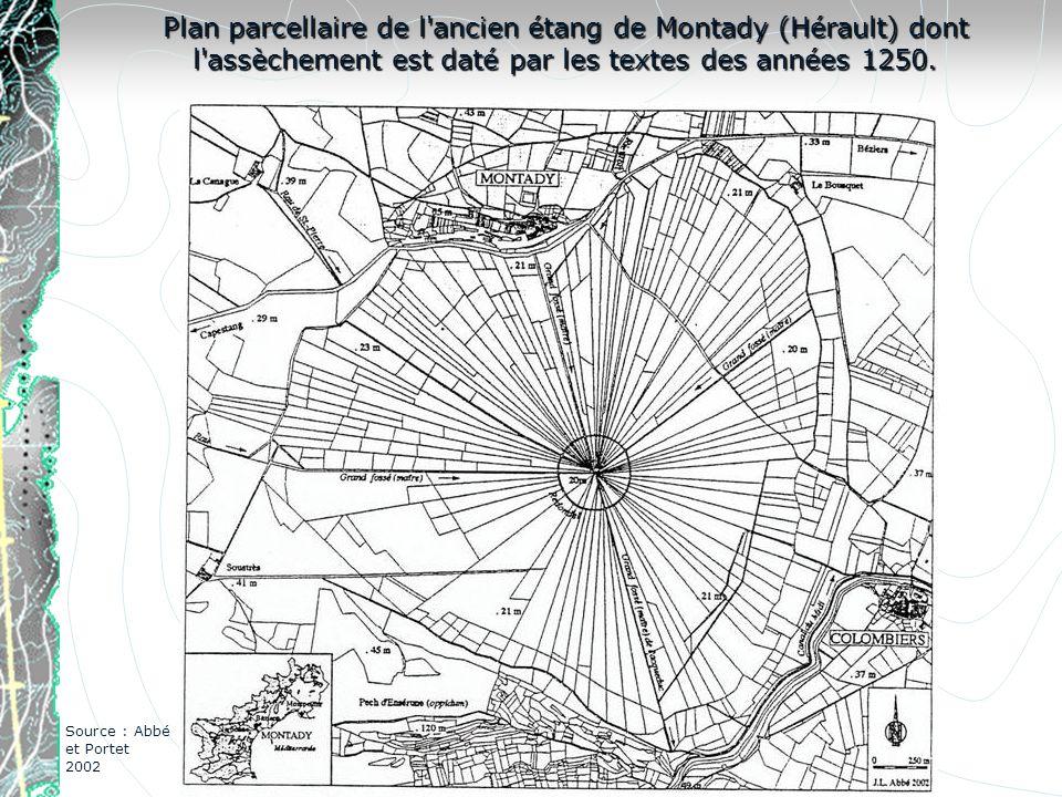 Plan parcellaire de l'ancien étang de Montady (Hérault) dont l'assèchement est daté par les textes des années 1250. Source : Abbé et Portet 2002