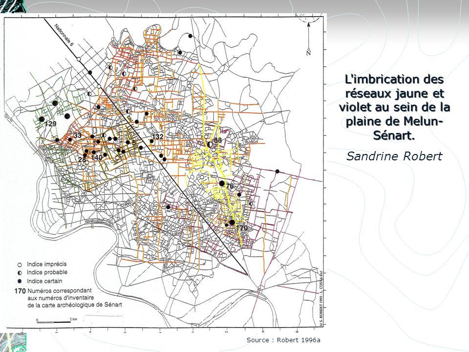 L'imbrication des réseaux jaune et violet au sein de la plaine de Melun- Sénart. Sandrine Robert Source : Robert 1996a