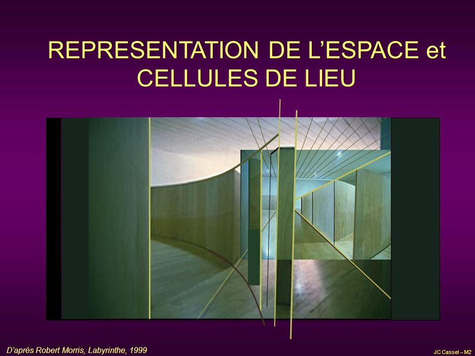JC Cassel – M2 HISTORIQUE (5) : TOLMAN et LA CARTE La carte cognitive: est le résultat dun traitement central des informations spatiales et ce traitement est indépendant dun renforcement (il sagit dun codage des aspects spatiaux dune configuration 3D), requiert une sélection et une organisation de linformation spatiale selon les relations spatiales qui relient les différents éléments constitutifs dun environnement, la représentation est celle dun environnement vaste, Ces points ont amené Gallistel (1990) à poser le principe dun isomorphisme fonctionnel : correspondance formelle entre processus mentaux (ou neuronaux) et événements du monde extérieur (configuration = relations et opérations combinatoires sur le plan spatial)