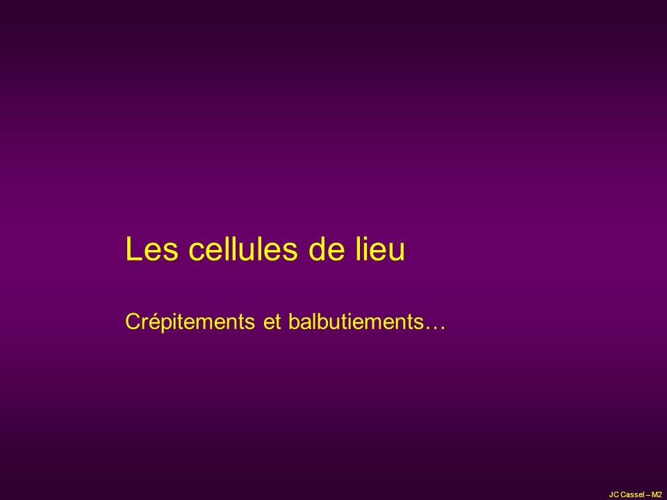 JC Cassel – M2 Les cellules de lieu Crépitements et balbutiements…