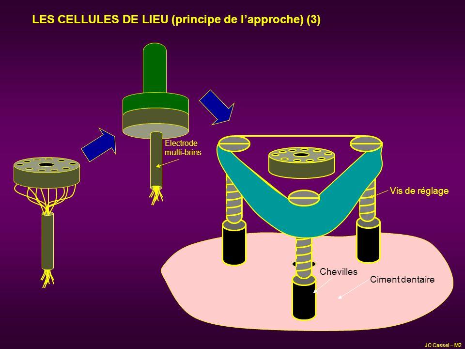 JC Cassel – M2 Vis de réglage Chevilles Ciment dentaire Electrode multi-brins LES CELLULES DE LIEU (principe de lapproche) (3)