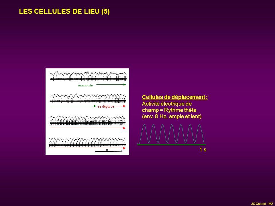 LES CELLULES DE LIEU (5) immobile se déplace Cellules de déplacement : Activité électrique de champ = Rythme thêta (env. 8 Hz, ample et lent) 1 s JC C