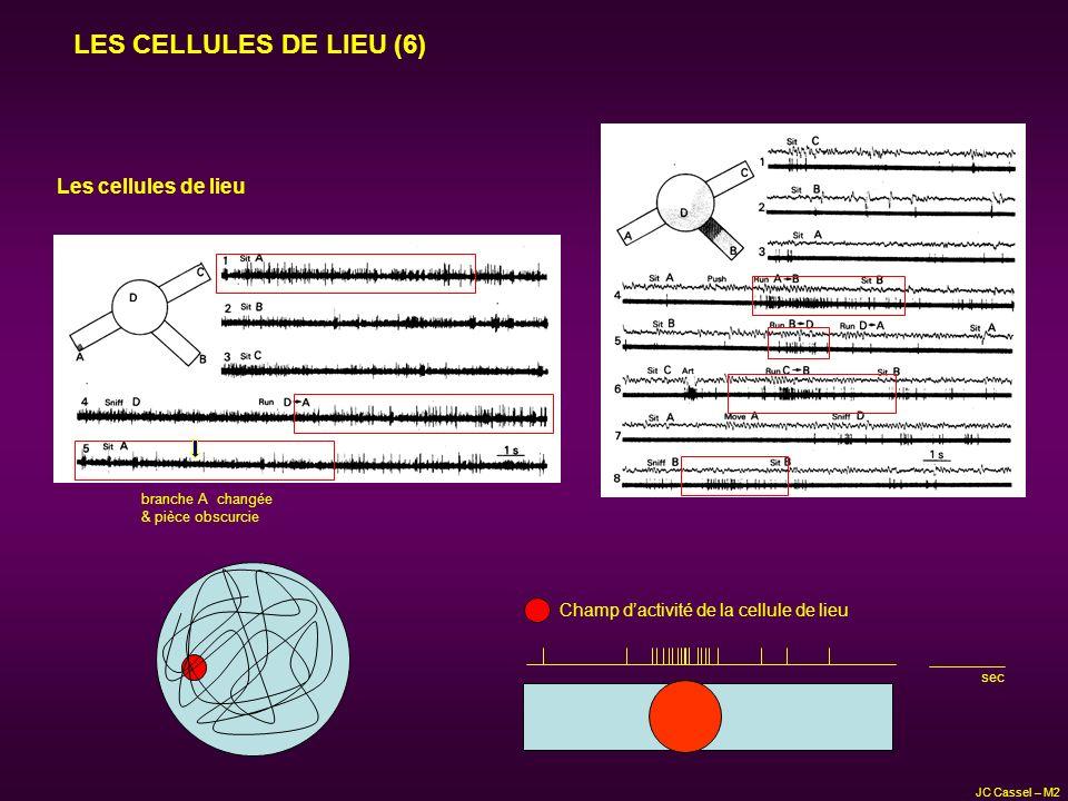LES CELLULES DE LIEU (6) branche A changée & pièce obscurcie Les cellules de lieu Champ dactivité de la cellule de lieu sec JC Cassel – M2