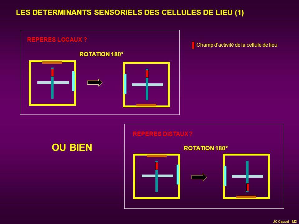 LES DETERMINANTS SENSORIELS DES CELLULES DE LIEU (1) OU BIEN ROTATION 180° REPERES DISTAUX ? ROTATION 180° REPERES LOCAUX ? Champ dactivité de la cell