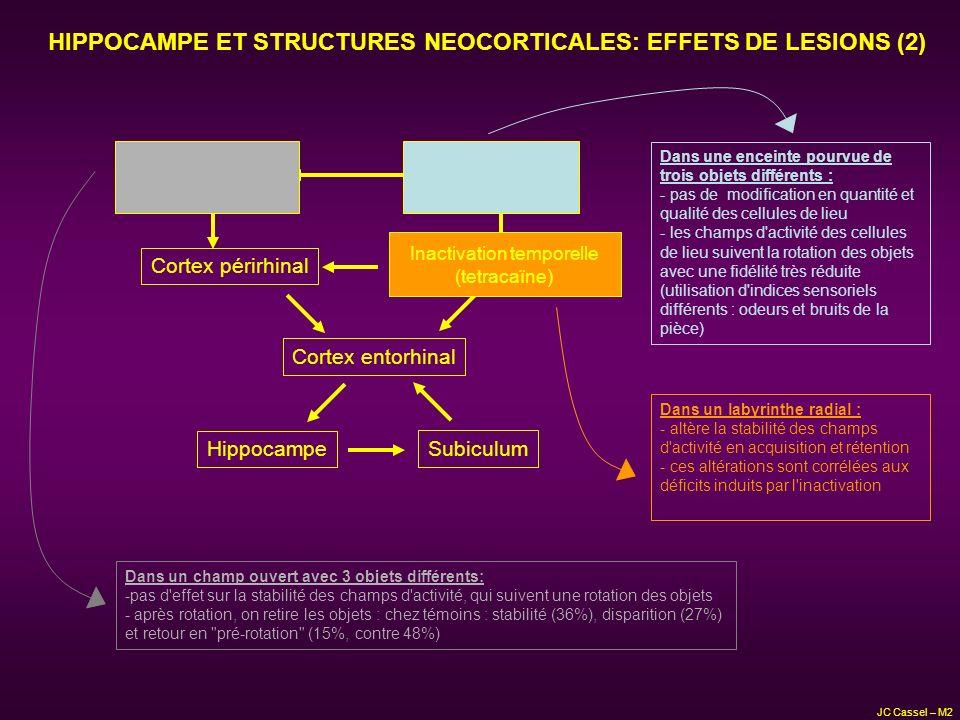 HIPPOCAMPE ET STRUCTURES NEOCORTICALES: EFFETS DE LESIONS (2) Hippocampe Subiculum Cortex entorhinal Cortex périrhinalCortex rétrosplénial Cortex pari