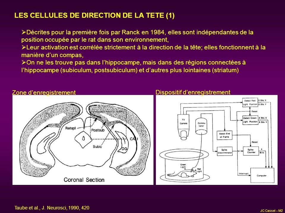 LES CELLULES DE DIRECTION DE LA TETE (1) Décrites pour la première fois par Ranck en 1984, elles sont indépendantes de la position occupée par le rat