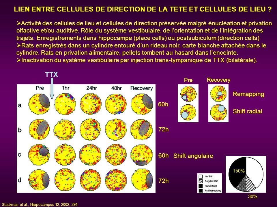 LIEN ENTRE CELLULES DE DIRECTION DE LA TETE ET CELLULES DE LIEU ? Activité des cellules de lieu et cellules de direction préservée malgré énucléation
