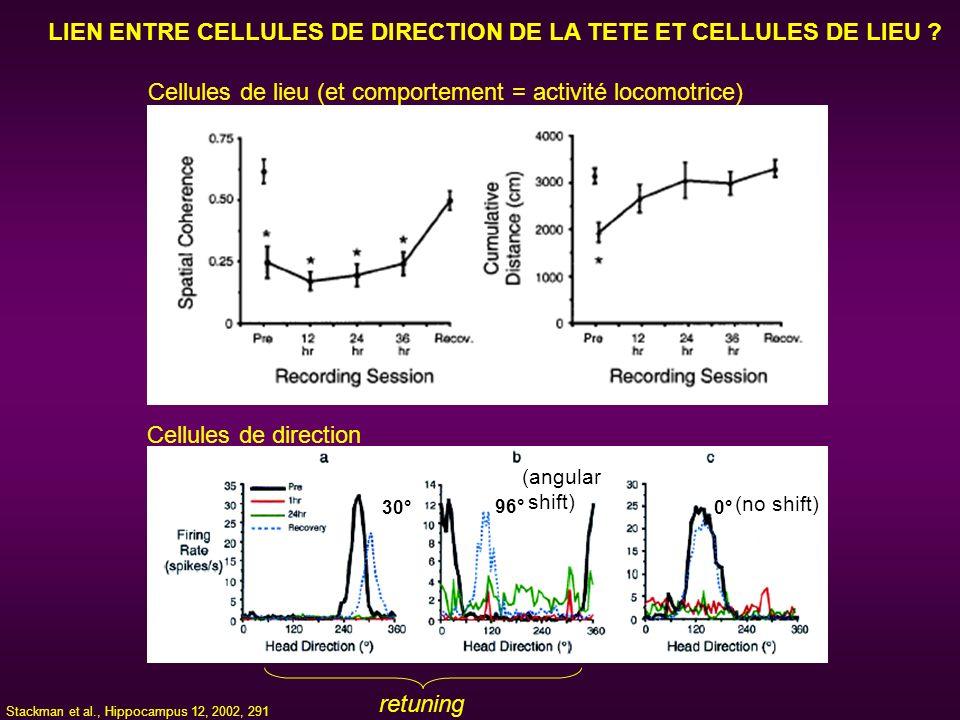 LIEN ENTRE CELLULES DE DIRECTION DE LA TETE ET CELLULES DE LIEU ? 30° 96° 0° retuning Cellules de direction Cellules de lieu (et comportement = activi