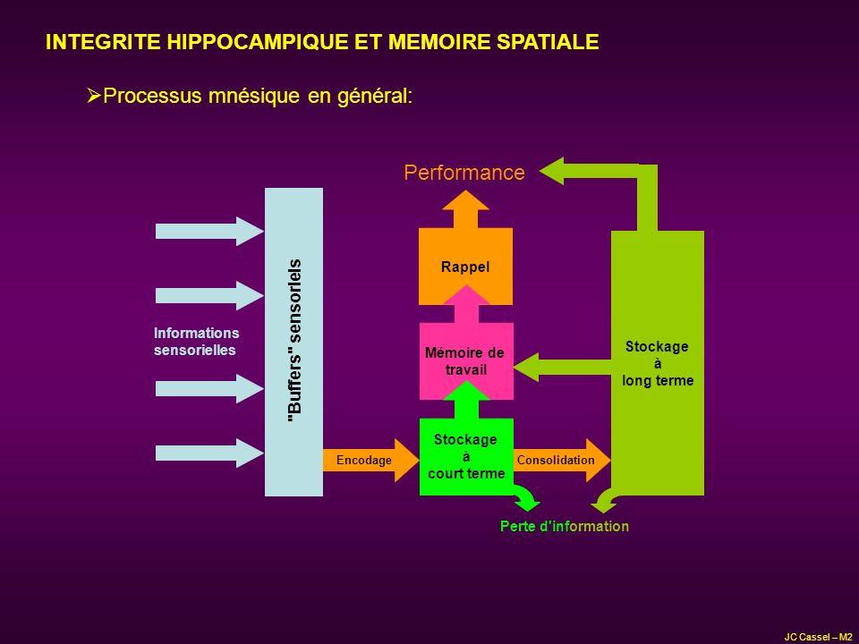 INTEGRITE HIPPOCAMPIQUE ET MEMOIRE SPATIALE Processus mnésique en général: Rappel Stockage à long terme EncodageConsolidation Mémoire de travail Stock