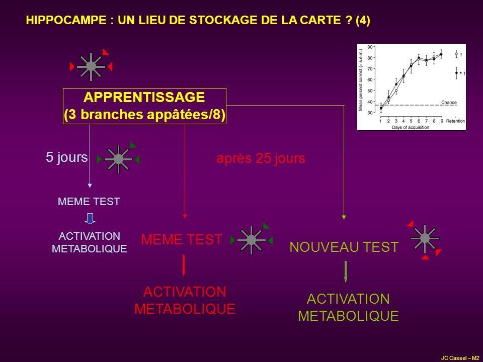 5 jours après 25 jours MEME TEST ACTIVATION METABOLIQUE NOUVEAU TEST ACTIVATION METABOLIQUE ACTIVATION METABOLIQUE D après Bontempi et al., Nature 400