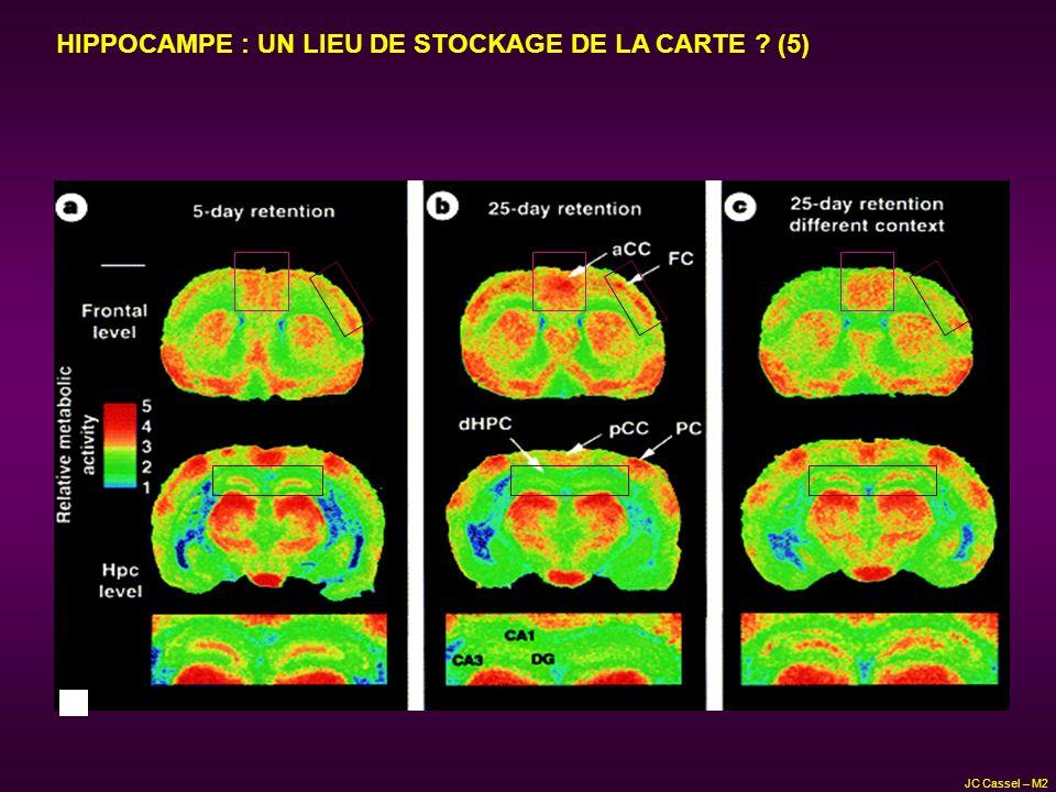 HIPPOCAMPE : UN LIEU DE STOCKAGE DE LA CARTE ? (5) JC Cassel – M2