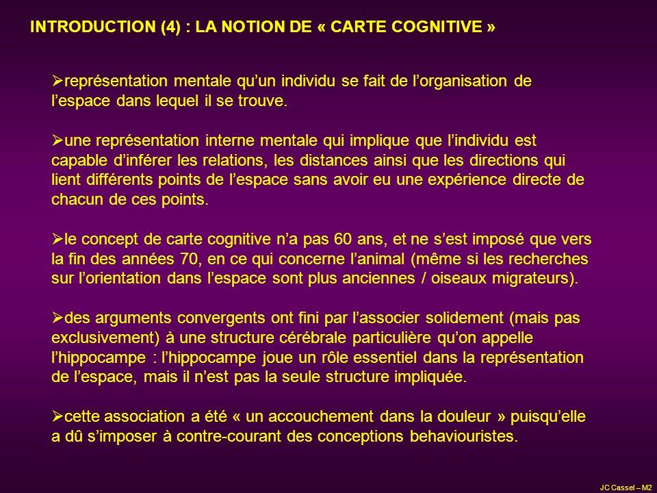 JC Cassel – M2 représentation mentale quun individu se fait de lorganisation de lespace dans lequel il se trouve. une représentation interne mentale q