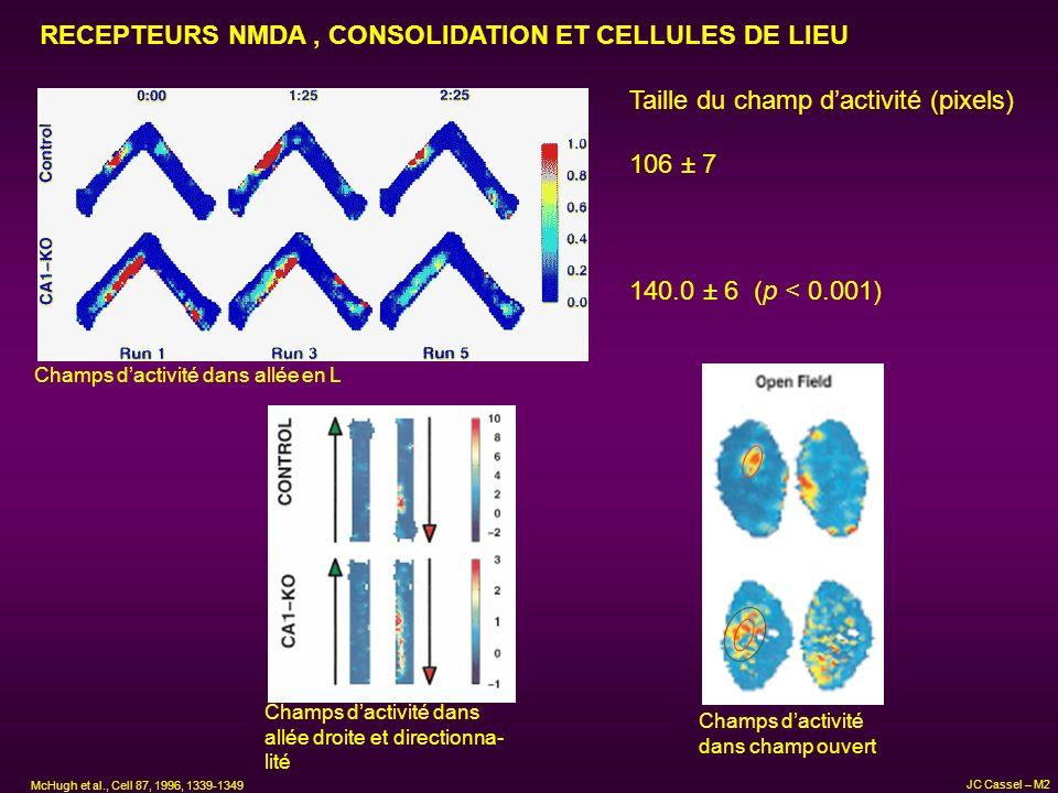 RECEPTEURS NMDA, CONSOLIDATION ET CELLULES DE LIEU Taille du champ dactivité (pixels) 106 ± 7 140.0 ± 6 (p < 0.001) Champs dactivité dans allée en L C