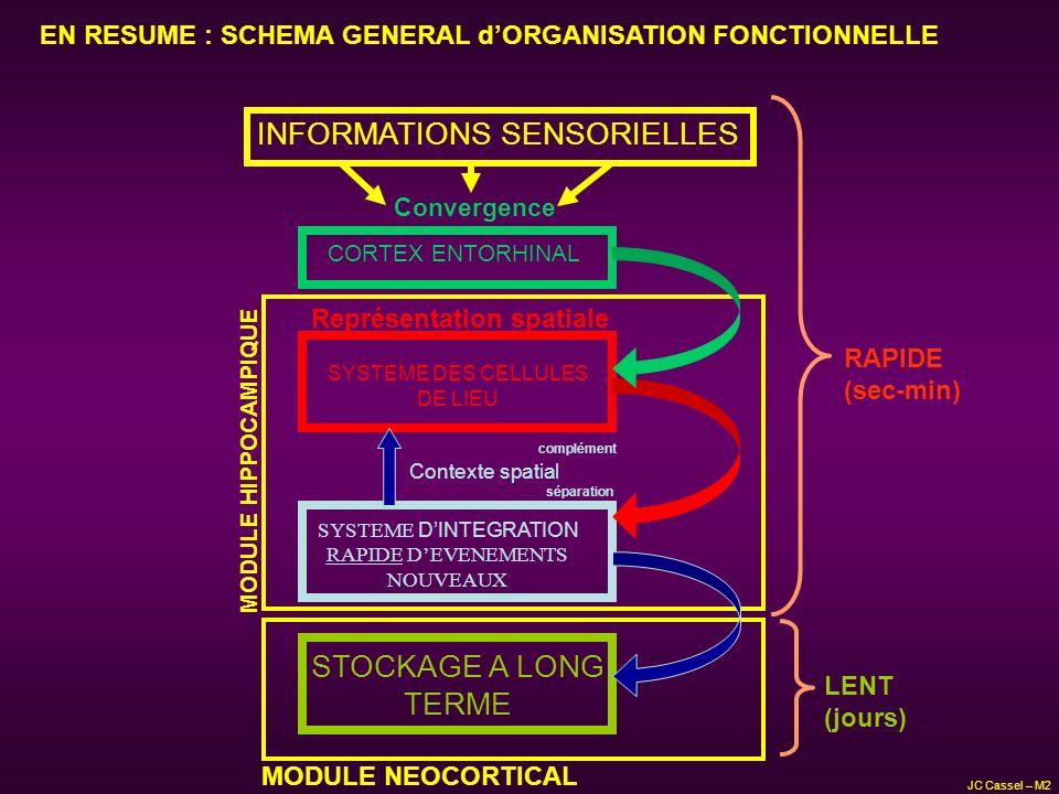 SYSTEME DES CELLULES DE LIEU SYSTEME DINTEGRATION RAPIDE DEVENEMENTS NOUVEAUX STOCKAGE A LONG TERME CORTEX ENTORHINAL INFORMATIONS SENSORIELLES Contex