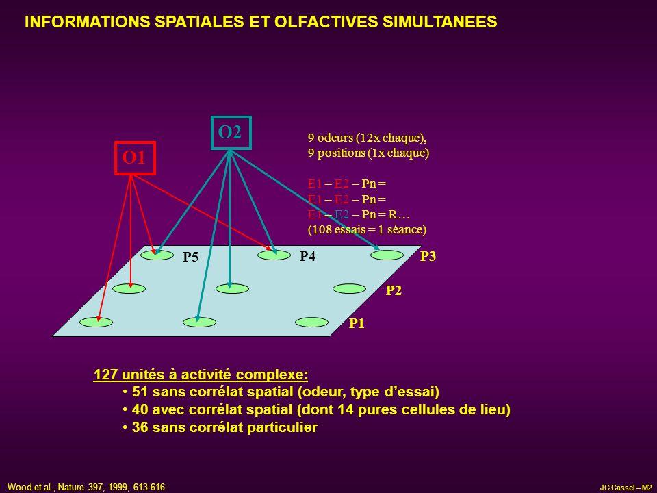 O1 O2 P3 P2 P4 127 unités à activité complexe: 51 sans corrélat spatial (odeur, type dessai) 40 avec corrélat spatial (dont 14 pures cellules de lieu)