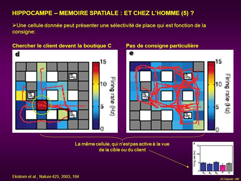 HIPPOCAMPE – MEMOIRE SPATIALE : ET CHEZ LHOMME (5) ? Une cellule donnée peut présenter une sélectivité de place qui est fonction de la consigne: Cherc