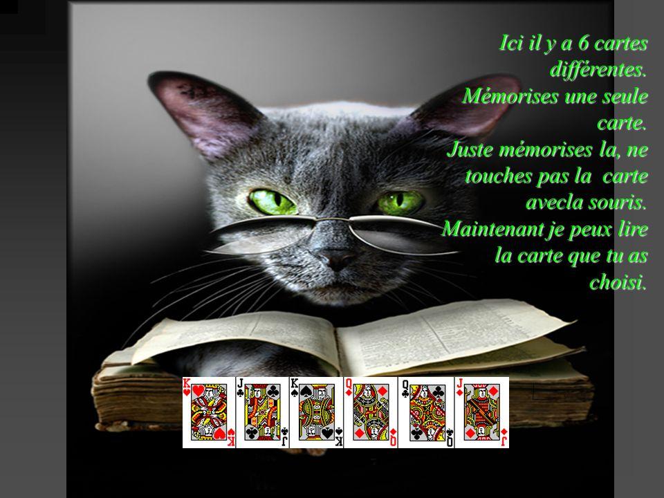 Ici il y a 6 cartes différentes. Mémorises une seule carte. Juste mémorises la, ne touches pas la carte avecla souris. Maintenant je peux lire la cart