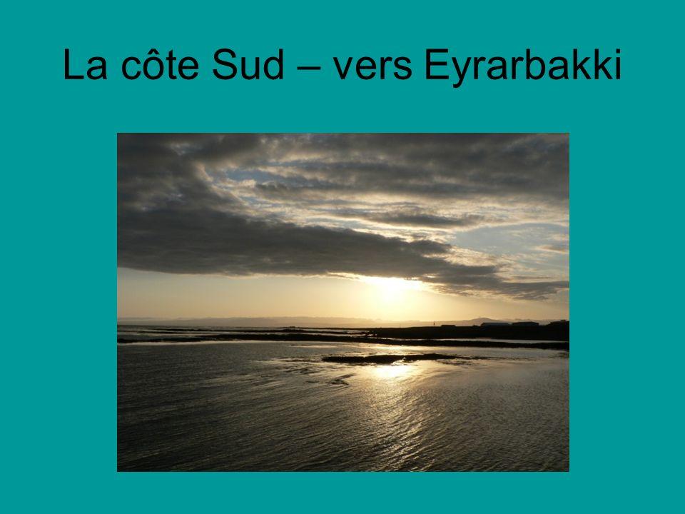 La côte Sud – vers Eyrarbakki