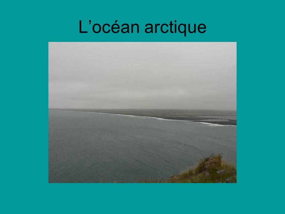 Locéan arctique