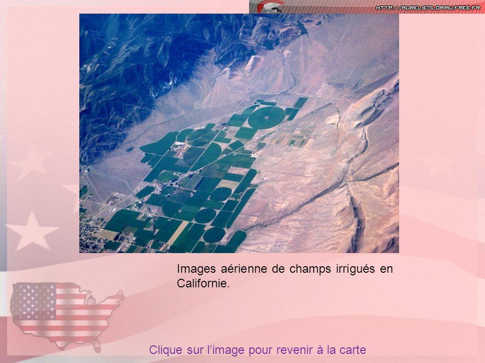 Images aérienne de champs irrigués en Californie. Clique sur limage pour revenir à la carte