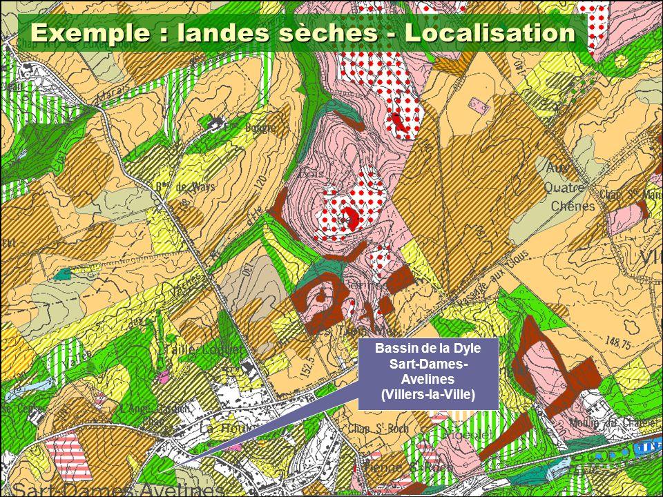 12 Exemple : landes sèches - Localisation Bassin de la Dyle Sart-Dames- Avelines (Villers-la-Ville)