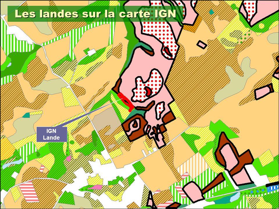 14 IGN Lande Les landes sur la carte IGN