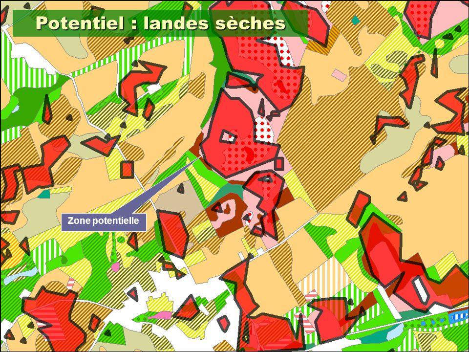 15 Potentiel : landes sèches Zone potentielle