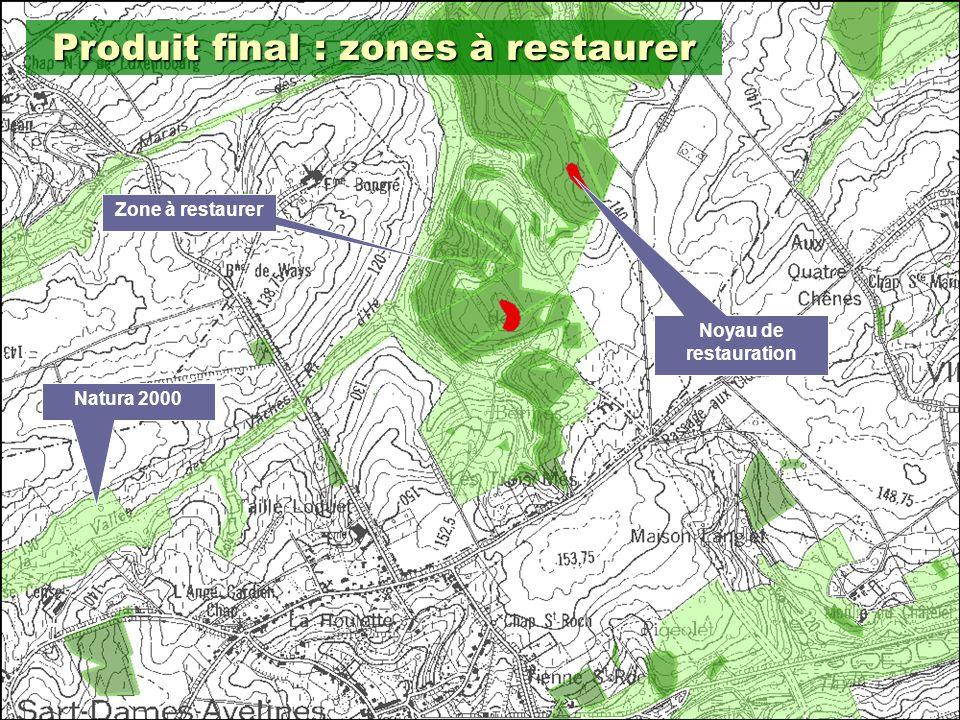 18 Produit final : zones à restaurer Noyau de restauration Zone à restaurer Natura 2000