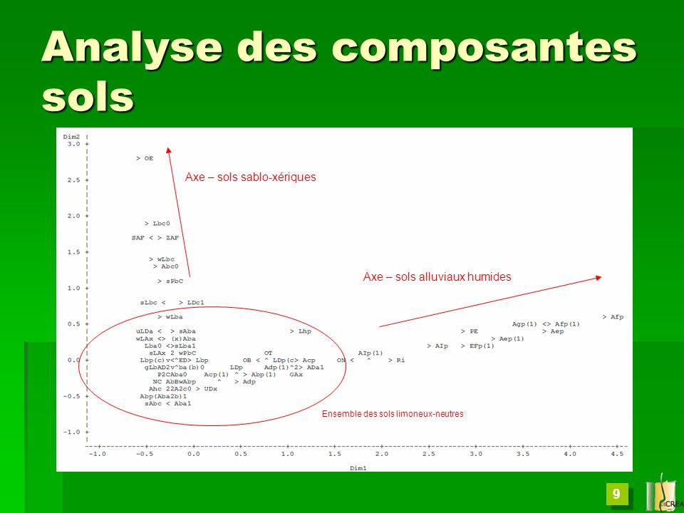 9 Analyse des composantes sols Axe – sols alluviaux humides Axe – sols sablo-xériques Ensemble des sols limoneux-neutres