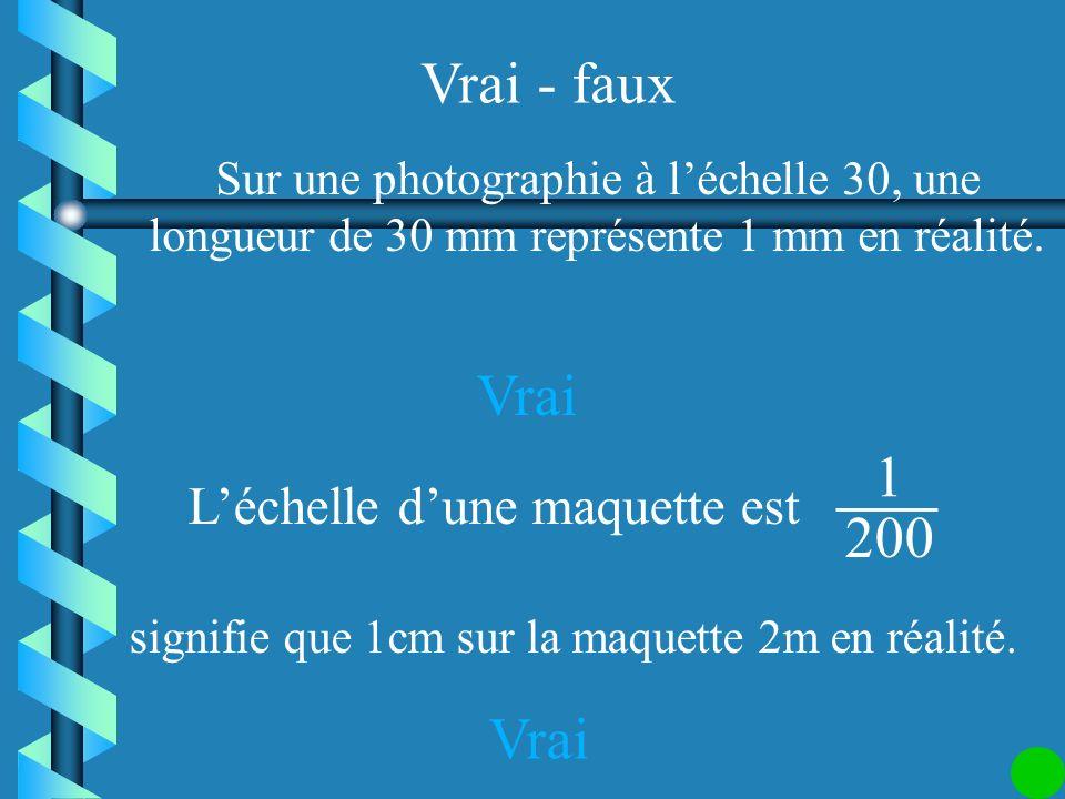 Vrai - faux Léchelle de cette photo dune fourmi est 0,05. faux