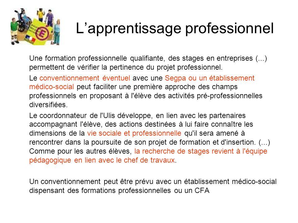Lapprentissage professionnel Une formation professionnelle qualifiante, des stages en entreprises (...) permettent de vérifier la pertinence du projet