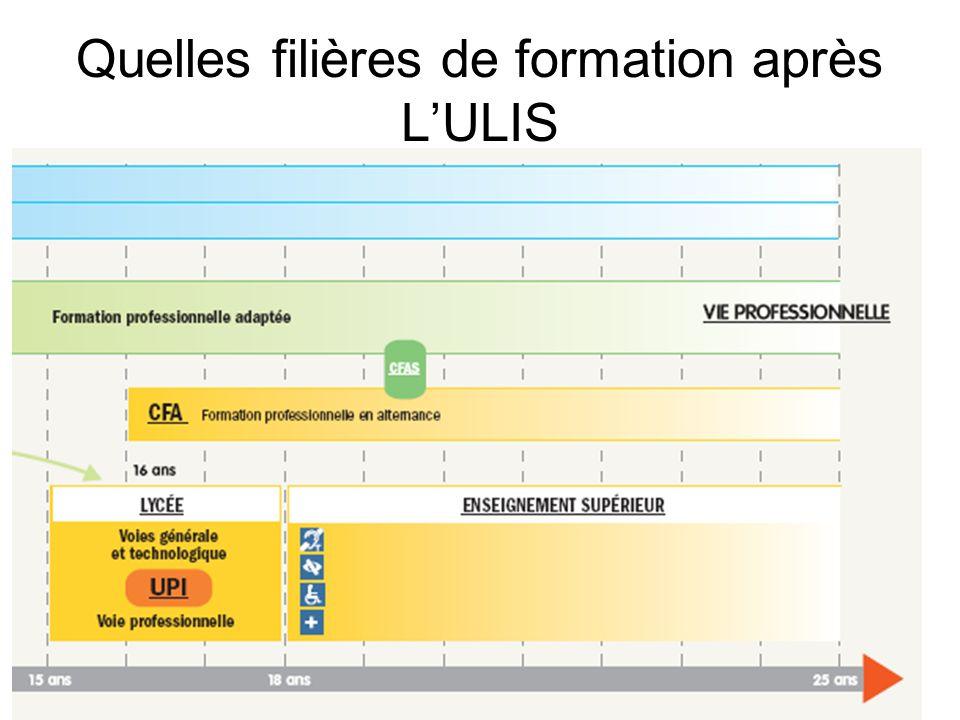 Quelles filières de formation après LULIS