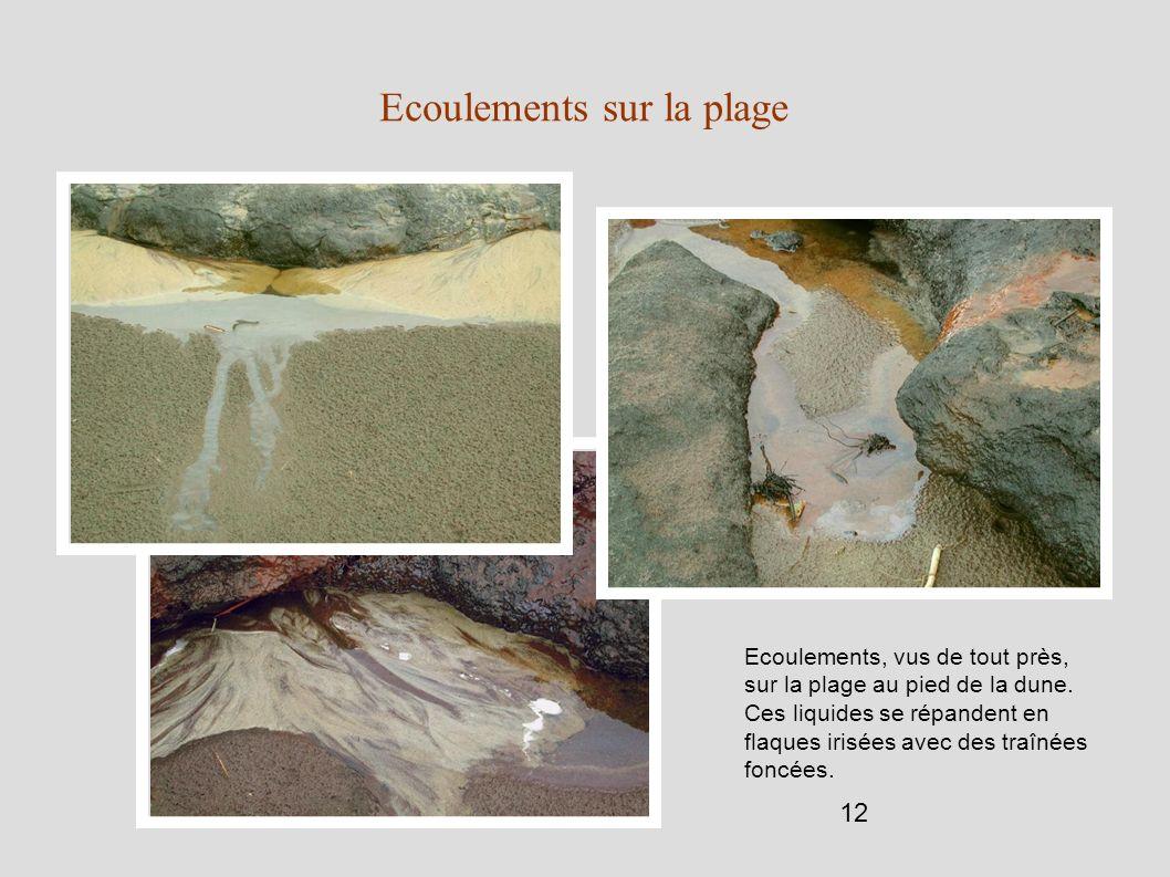 12 Ecoulements sur la plage Ecoulements, vus de tout près, sur la plage au pied de la dune. Ces liquides se répandent en flaques irisées avec des traî