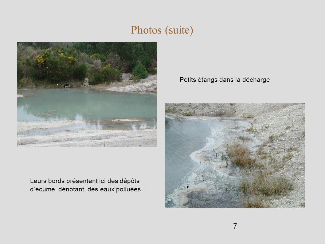 7 Photos (suite) Petits étangs dans la décharge Leurs bords présentent ici des dépôts décume dénotant des eaux polluées.