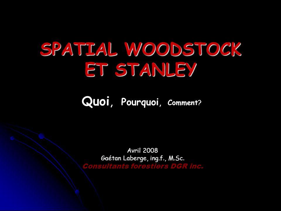 SPATIAL WOODSTOCK ET STANLEY Quoi, Pourquoi, Comment? Avril 2008 Gaétan Laberge, ing.f., M.Sc. Consultants forestiers DGR inc.