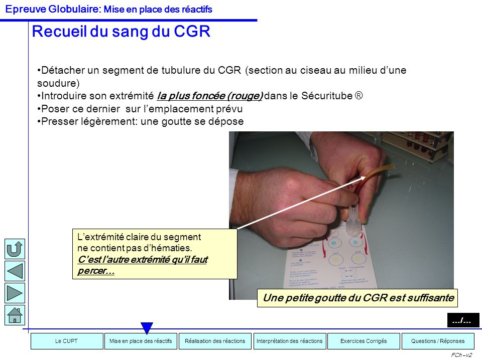 Interprétation des réactionsRéalisation des réactionsMise en place des réactifsExercices CorrigésLe CUPTQuestions / Réponses FCh –v2 Recueillir et dép
