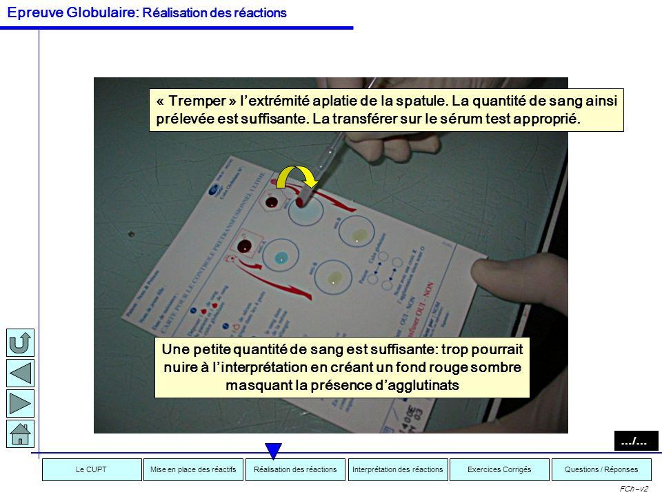 Interprétation des réactionsRéalisation des réactionsMise en place des réactifsExercices CorrigésLe CUPTQuestions / Réponses FCh –v2 Mise en contact s