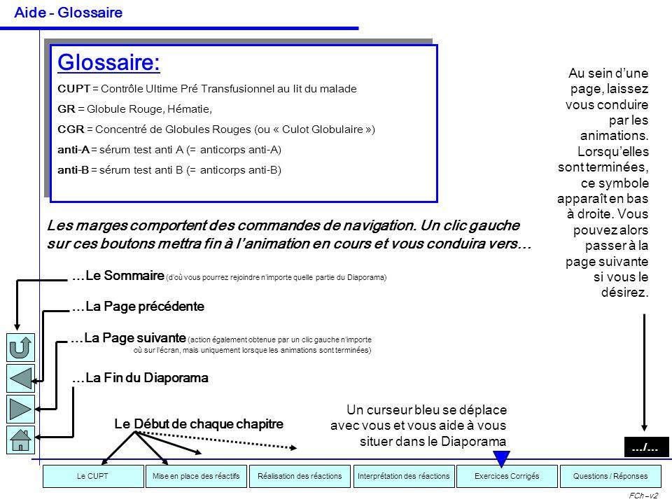 Interprétation des réactionsRéalisation des réactionsMise en place des réactifsExercices CorrigésLe CUPTQuestions / Réponses FCh –v2 Réalisation et In