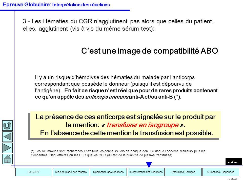 Interprétation des réactionsRéalisation des réactionsMise en place des réactifsExercices CorrigésLe CUPTQuestions / Réponses FCh –v2 Si le CGR « agglu