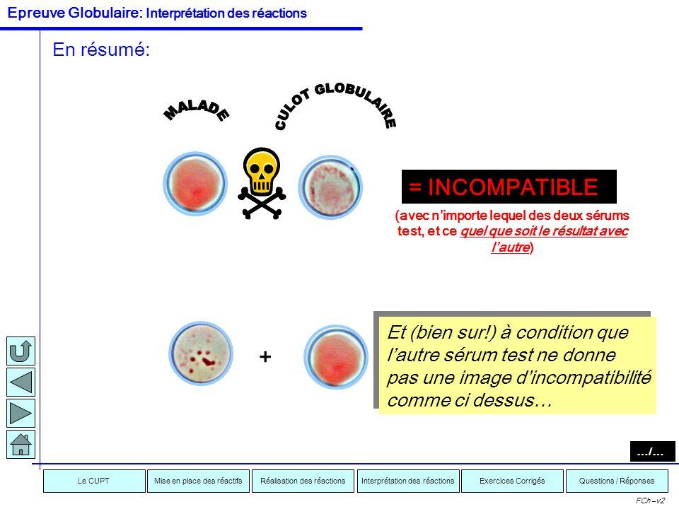 Interprétation des réactionsRéalisation des réactionsMise en place des réactifsExercices CorrigésLe CUPTQuestions / Réponses FCh –v2 IDENTIQUE COMPATI