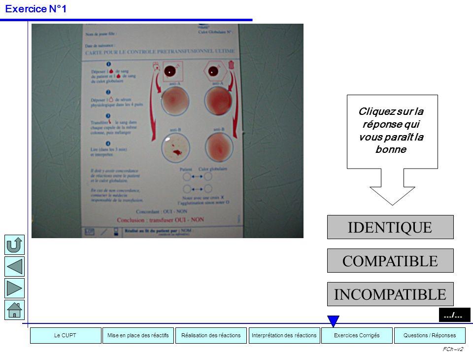 Interprétation des réactionsRéalisation des réactionsMise en place des réactifsExercices CorrigésLe CUPTQuestions / Réponses FCh –v2 EXERCICES …/… Exe
