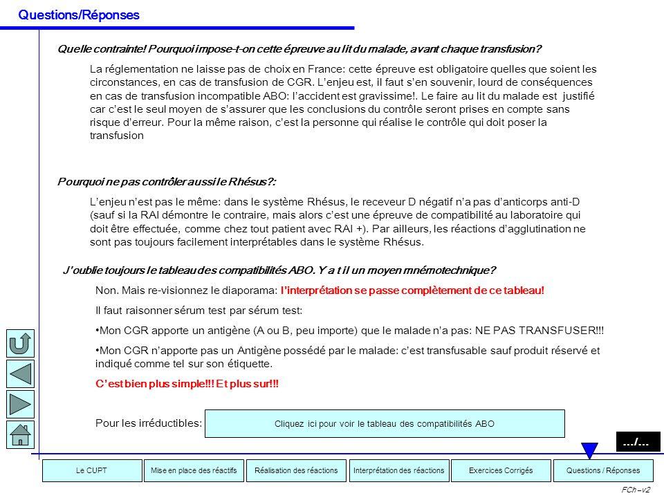 Interprétation des réactionsRéalisation des réactionsMise en place des réactifsExercices CorrigésLe CUPTQuestions / Réponses FCh –v2 Questions / Répon