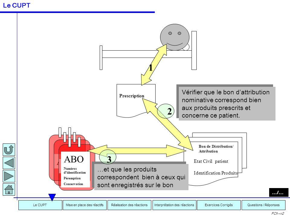 Interprétation des réactionsRéalisation des réactionsMise en place des réactifsExercices CorrigésLe CUPTQuestions / Réponses FCh –v2 Prescription 1 Vé