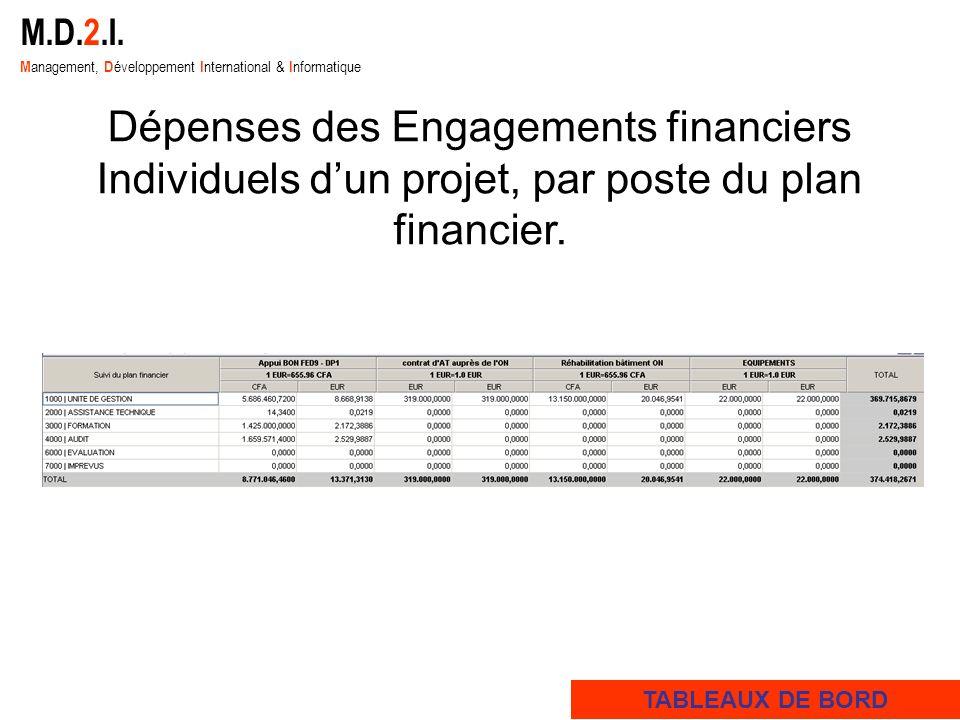 M.D.2.I. M anagement, D éveloppement I nternational & I nformatique Dépenses des Engagements financiers Individuels dun projet, par poste du plan fina