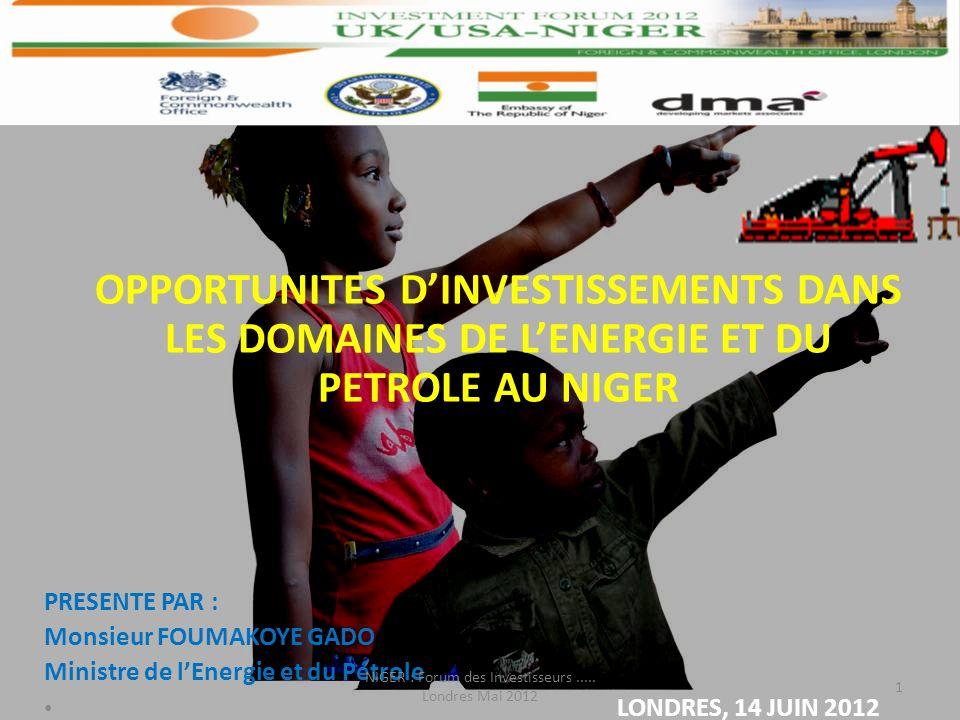 1 OPPORTUNITES DINVESTISSEMENTS DANS LES DOMAINES DE LENERGIE ET DU PETROLE AU NIGER PRESENTE PAR : Monsieur FOUMAKOYE GADO Ministre de lEnergie et du