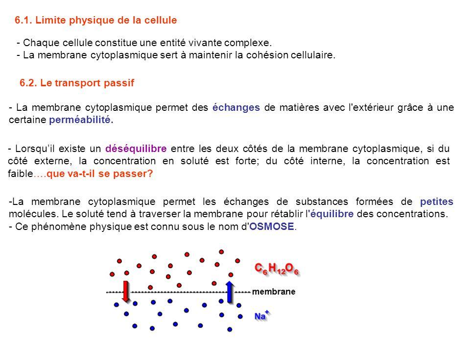 6.1. Limite physique de la cellule - Chaque cellule constitue une entité vivante complexe. - La membrane cytoplasmique sert à maintenir la cohésion ce