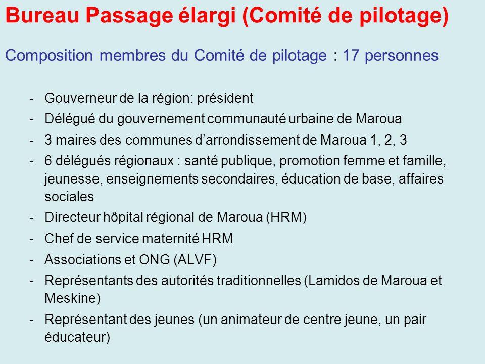 Bureau Passage élargi (Comité de pilotage) Composition membres du Comité de pilotage : 17 personnes -Gouverneur de la région: président -Délégué du go