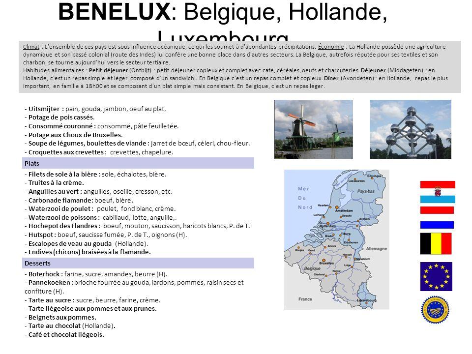 BENELUX: Belgique, Hollande, Luxembourg Climat : L'ensemble de ces pays est sous influence océanique, ce qui les soumet à d'abondantes précipitations.